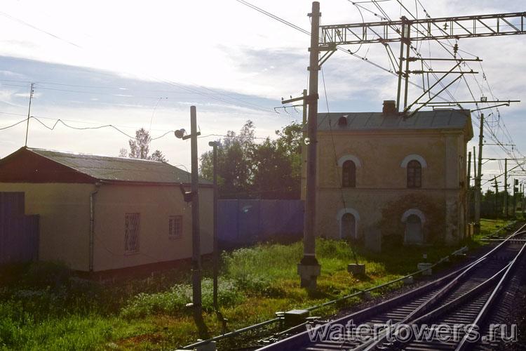легкие, смотреть фото станции гряды новгородской обл нашей компании маленькие